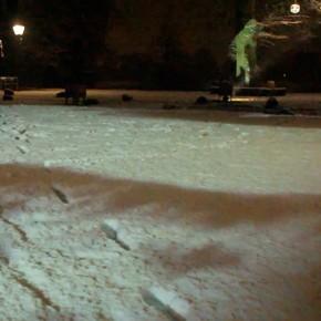 Sneeuwlumen filmpje