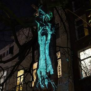 Video Amsterdam Light